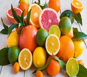 Apulian Citrus fruits